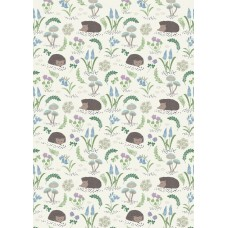 Bluebell Wood - Hedgehog on white
