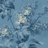 Blue Sky - Lilacs Sky's The Limit