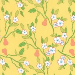 Acreage - Pears Sun