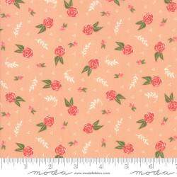 Clover Hollow - Peachy Dreamy