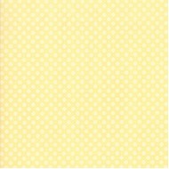 Finnegan - Flower Stitch Sunny