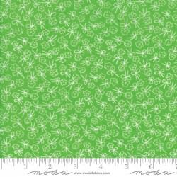 First Romance - Cutie Pie Green Single Stem