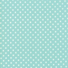 Little Snippets - Dot Aqua - PRE-ORDER DUE FEB