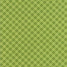 Little Snippets - Little Bias Gingham Green - PRE-ORDER DUE FEB