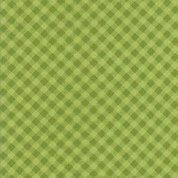Little Snippets - Little Bias Gingham Green