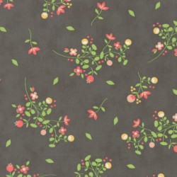 Sundrops - Dark Taupe Blossom