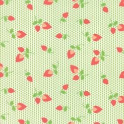 """Sundrops - Celery Rosebud - 56"""" Bolt End"""