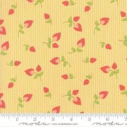 Sundrops - Dark Yellow Rosebuds