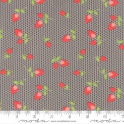 Sundrops - Dark Taupe Rosebuds - 1 Fat Quarter