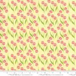 Tuppence - Butter Della Tulips