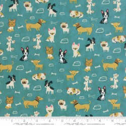 """Woof Woof Meow - Small But Mighty Turquoise - 31"""" Bolt End"""