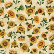 Sunrise Farm - Sunflower Toss Cream