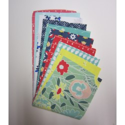 Curiosities - 5 inch strips