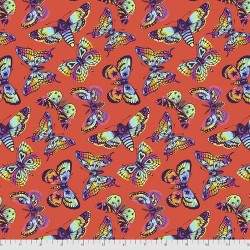 Daydreamer - Butterfly Kisses Papaya - PRE-ORDER DUE DECEMBER