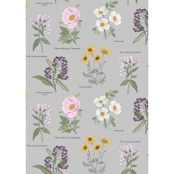Botanic Garden - Botanic Flowers On Light Grey