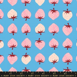 Ruby Star Society - Strawberry and Friends - Strawberry Altitude - PRE-ORDER DUE JUNE