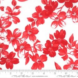 Sunday Stroll - Full Bloom White Red - PRE-ORDER DUE APRIL