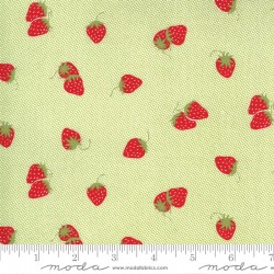 Sunday Stroll - Berry Patch Green - PRE-ORDER DUE APRIL