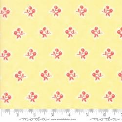 Catalina - Cherries Sunshine - PRE-ORDER DUE APRIL