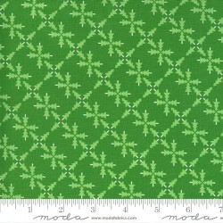 Merry And Bright - Forest Ever Green - PRE-ORDER DUE JUNE