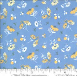 Spring Brook - Daisies Bluebonnet - PRE-ORDER DUE FEBRUARY