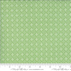 Spring Brook - Peels Sprout - PRE-ORDER DUE FEBRUARY