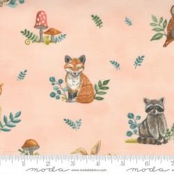 Effie's Wood - Allover Outdoor Blush - PRE-ORDER DUE NOVEMBER