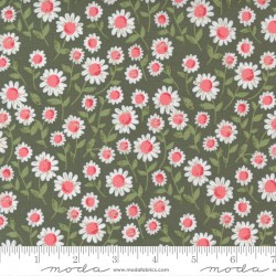 Love Note - Sweet Daisy Olive - PRE-ORDER DUE DECEMBER