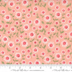 Love Note - Sweet Daisy Sweet Pink - PRE-ORDER DUE DECEMBER