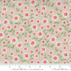 Love Note - Sweet Daisy Dove - PRE-ORDER DUE DECEMBER