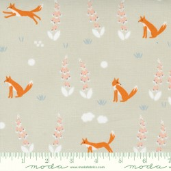 Meander - Foxes Cloud - PRE-ORDER DUE MARCH