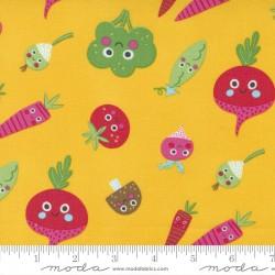 Rainbow Garden - Veggie Garden Sunshine - PRE-ORDER DUE JANUARY