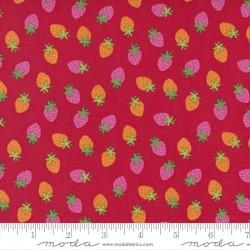 Rainbow Garden - Merry Berry Apple - PRE-ORDER DUE JANUARY