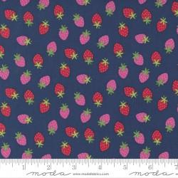 Rainbow Garden - Merry Berry Blueberry - PRE-ORDER DUE JANUARY