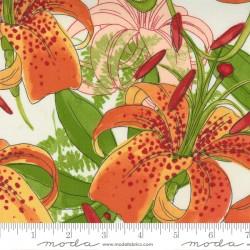 Carolina Lilies - Carolina Lilies Cream - PRE-ORDER DUE DECEMBER