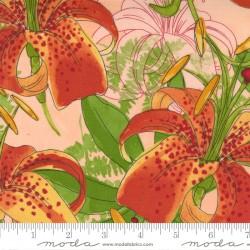Carolina Lilies - Carolina Lilies Peach - PRE-ORDER DUE DECEMBER