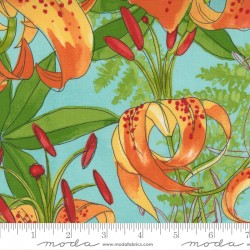 Carolina Lilies - Carolina Lilies Aqua - PRE-ORDER DUE DECEMBER