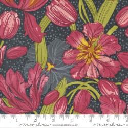 Tulip Tango - Tulips Shadow - PRE-ORDER DUE MAY