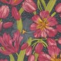 Tulip Tango - PRE-ORDER DUE MAY