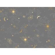 Ruby Star Society - Florida - Cosmos Slate Grey - PRE-ORDER DUE NOVEMBER