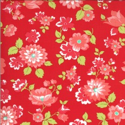 Shine On - Blossom Red - PRE-ORDER DUE NOVEMBER