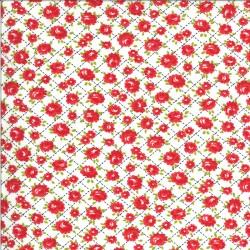 Shine On - Roses White - PRE-ORDER DUE NOVEMBER