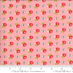 Shine On - Beesley Pink - PRE-ORDER DUE NOVEMBER