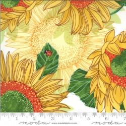 Solana - Sunflowers Cream - 1 Cut FQ
